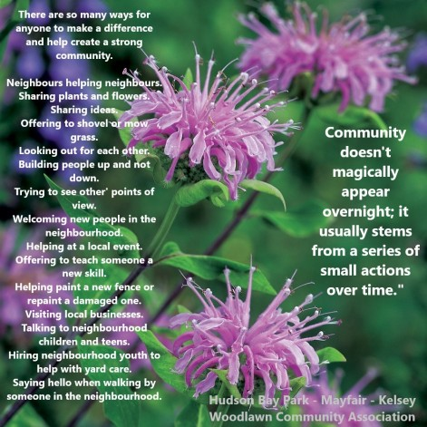 2019 Community poster re helping make stronger with wildflower bergamot